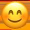 素南风的分享图片1