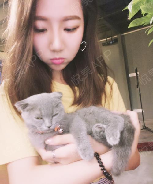 刘lisa的分享图片1